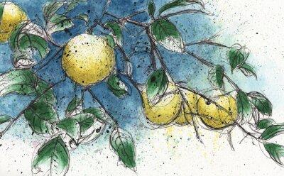Sticker Zitrone Zweig