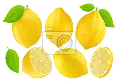 Sticker Zitronen-Sammlung isoliert auf weißem Hintergrund