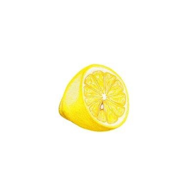 Sticker Zitronenkunst