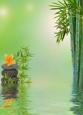 Sticker Zusammensetzung aquatique Entspannungsmassage zen