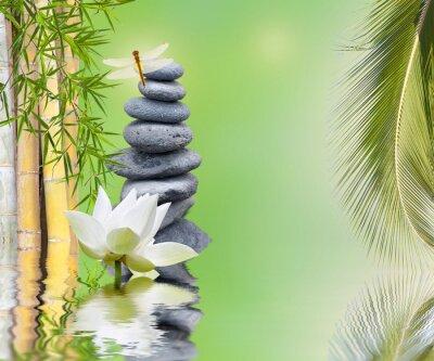 Sticker Zusammensetzung bambou palmier galets zen aquatique
