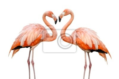 Sticker Zwei Flamingos bilden Eine Herzform