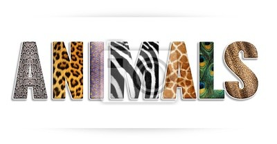 zwierzęta, Tiere - napis